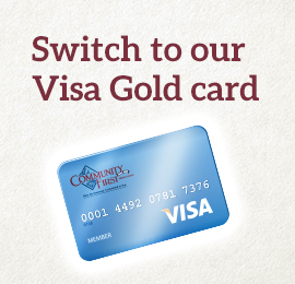 Visa Rewards Card
